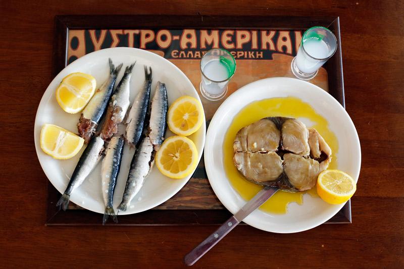 ston-gastronomo-ma-oy3